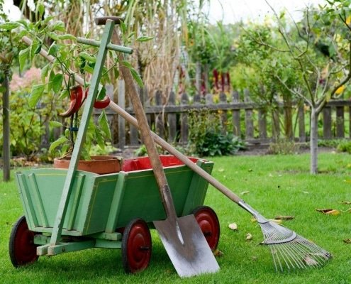 garden-clearance-wexford